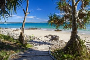 day tours from Brisbane - Noosa Beach View